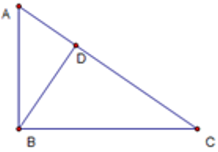 Important notes on Triangles and their Properties